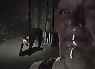 Film horror stile documentario - The Poughkeepsie tapes