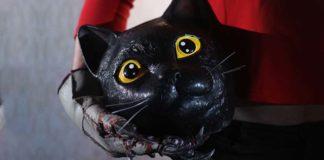 Cat Sick Blues - Recensione